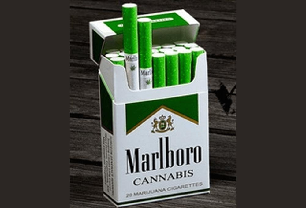 Где купить мальборо с марихуаной как готовить кашу из марихуаны