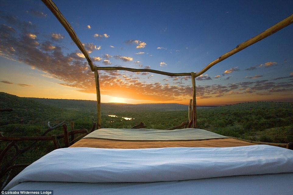 "Кения, гостиница ""Loisaba Wilderness Lodge"""