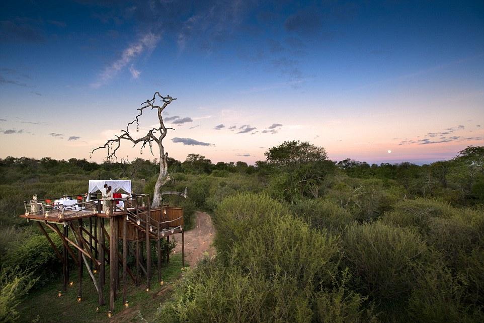 "Южная Африка, гостиница ""Lion Sands Game Reserve"""