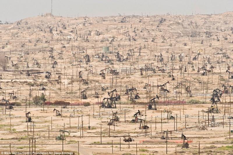 Нефтяное поле в Калифорнии и его беспощадная эксплуатация человеком.
