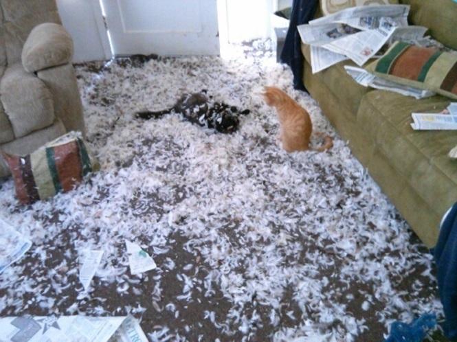 Да, это была подушка.