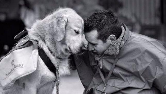 10 историй, после которых начинаешь верить в бескорыстную доброту