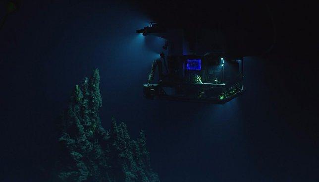 Новости из подводного мира: запущена онлайн-трансляция со дна Марианской впадины (Видео)