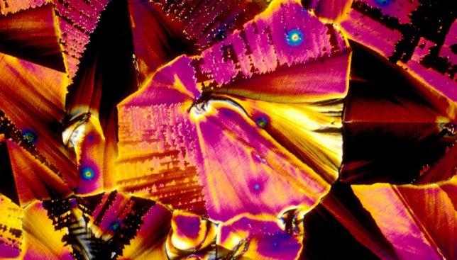 Алкоголь под микроскопом: как выглядит спиртное на самом деле (Фото)