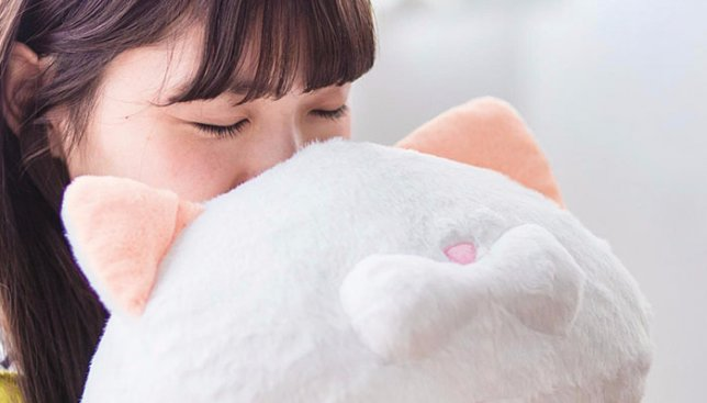 Новые курьезы от японцев: духи с запахом кота