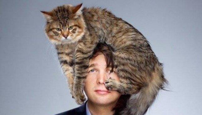Психология кошек: как на самом деле они воспринимают своих хозяев (Фото)
