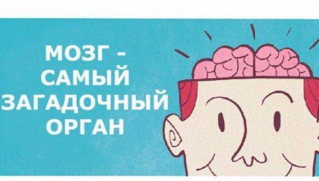 33 невероятных факта о человеческом мозге, о которых Вы раньше не слышали