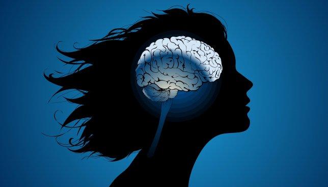 Деградация мозговой активности: почему современные люди более рассеяны и ленивы