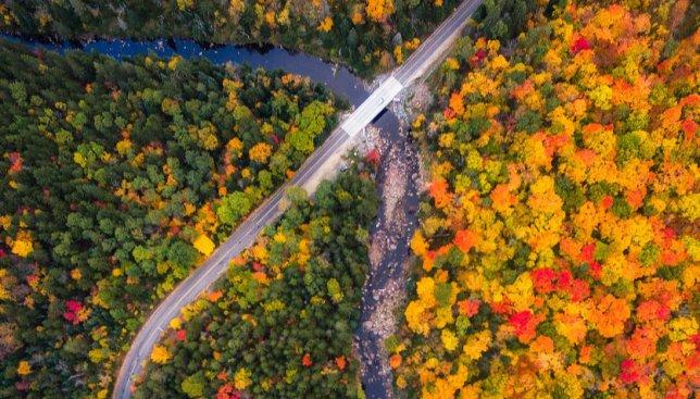 13 фотографий разноцветной осени с высоты птичьего полета
