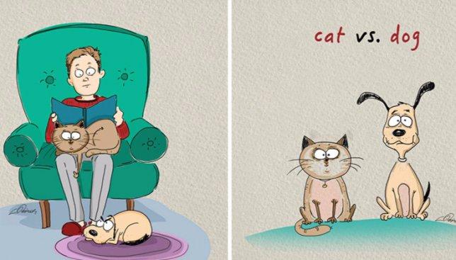Смешные иллюстрации: разница между домашними котами и собаками
