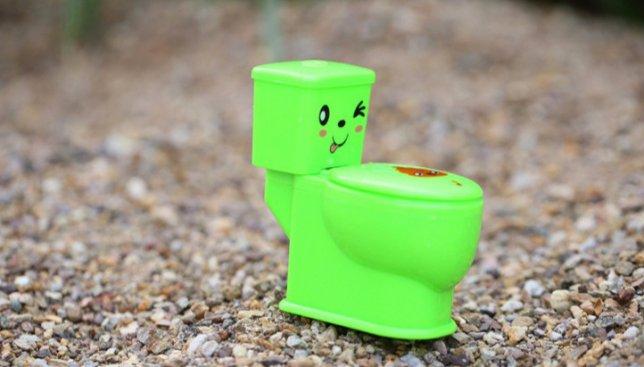 Ребенок в восторге: туалет, в котором можно играться (Фото)