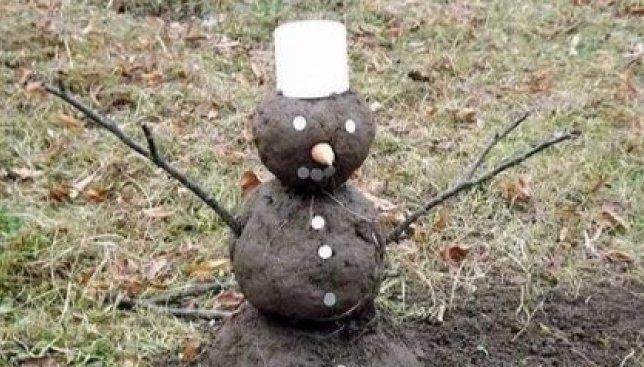 Новый год уже который раз без снега: шутки украинцев по этому поводу