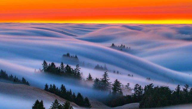 10 волшебных фотографий, на которых туман создает необычные рисунки