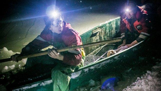 Сегодня день волонтеров: как Kyiv Animal Rescue Group по ночам спасают замерших лебедей (Фото)