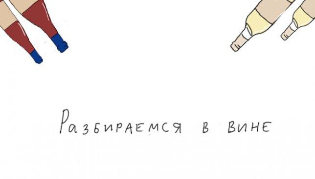 Сегодня пятница: как правильно разбираться в вине с юмором (Иллюстрации)