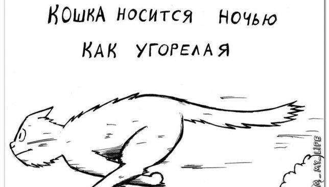 Смешные иллюстрации: как легко определить породу кота по его характеру