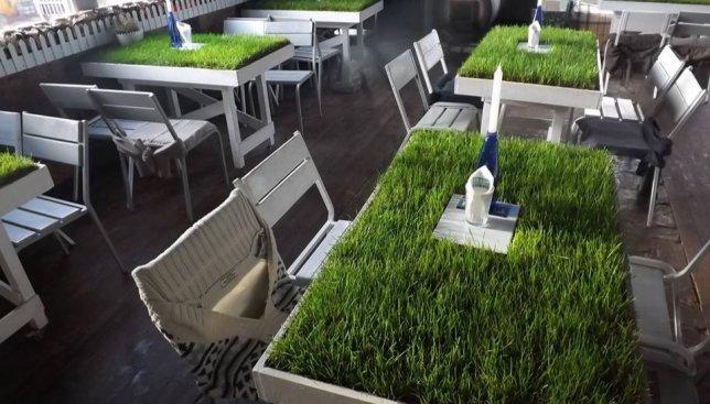 В Ирпене открыли кафе, где на столах вместо скатерти - трава (Фото)