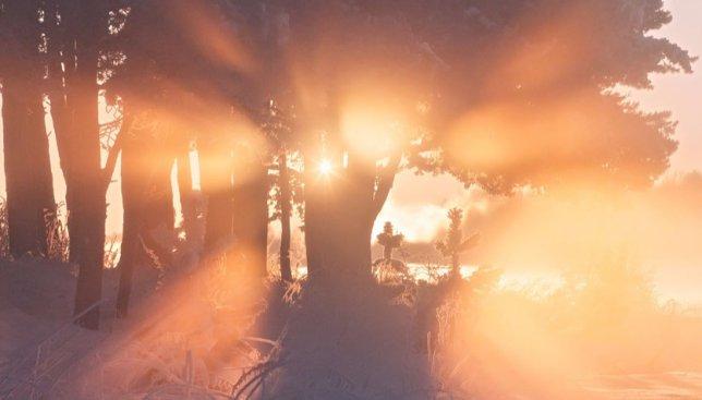10 невероятных снимков утреннего заснеженного озера: как просыпается природа (Фото)