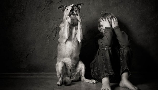 20 фотографий, которые доказывают, что детям нельзя жить без домашних животных