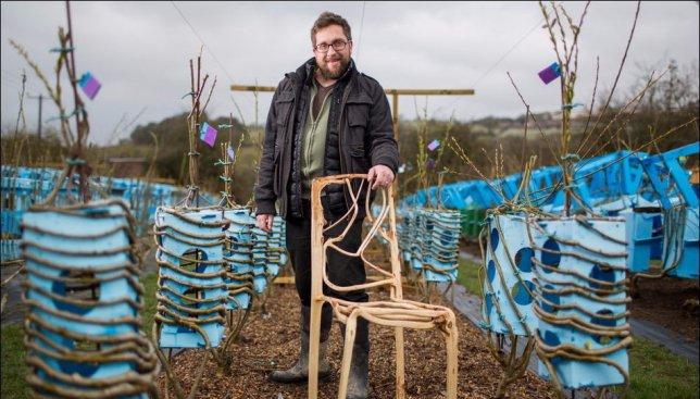 Необычное производство: британец придумал технику выращивания мебели (Фото)