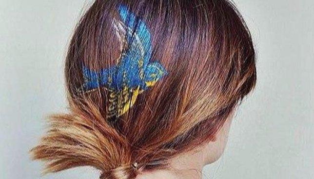 Новый странный тренд: рисунки на волосах (Фото)