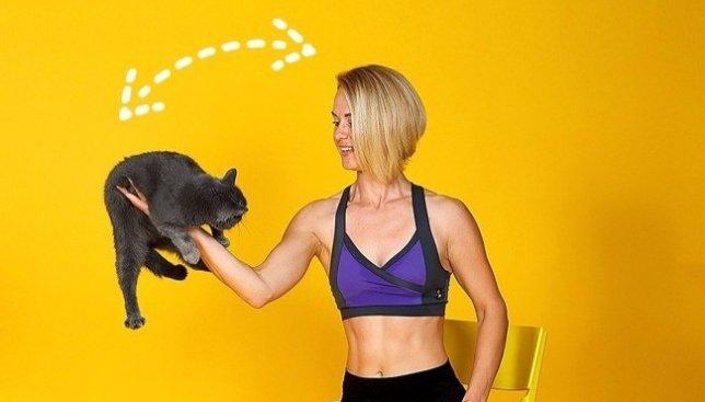 8 фотографий, как заменить спортзал одним домашним котом