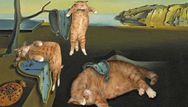 Рыжий кот на руках у Моны Лизы и другие котошедевры