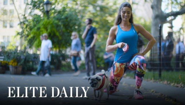 Необычная зарядка: как заниматься спортом вместе со своей собакой (Видео)