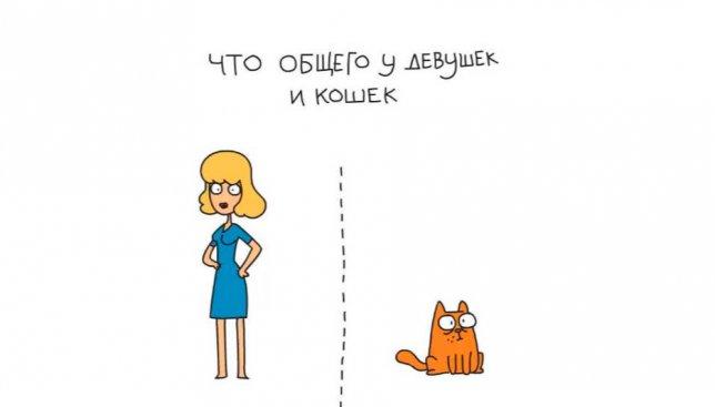 Правда жизни: что общего у девушек и кошек (Видео)
