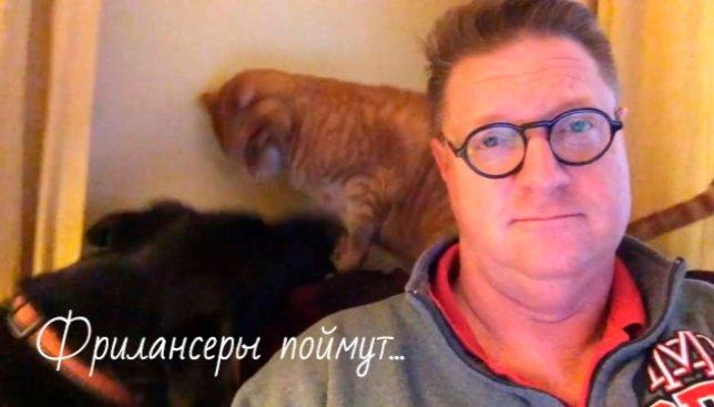Фрилансеры поймут: что бывает, когда хочешь поработать дома (Видео)