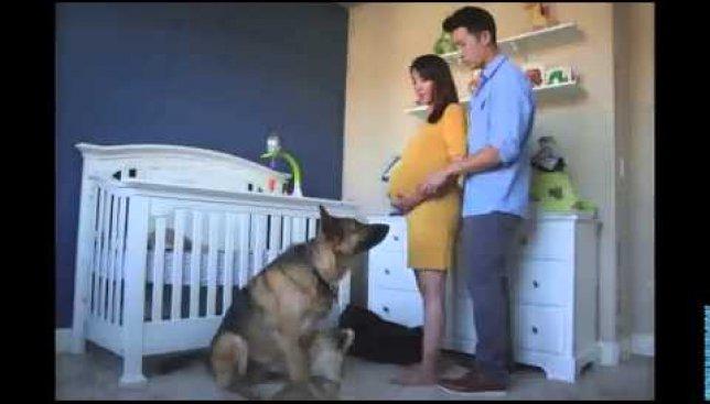 Счастье для женщины: все 9 месяцев беременности за 90 секунд