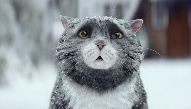 А вы знали, что самое популярное рождественское видео - это не просто рекламный ход?