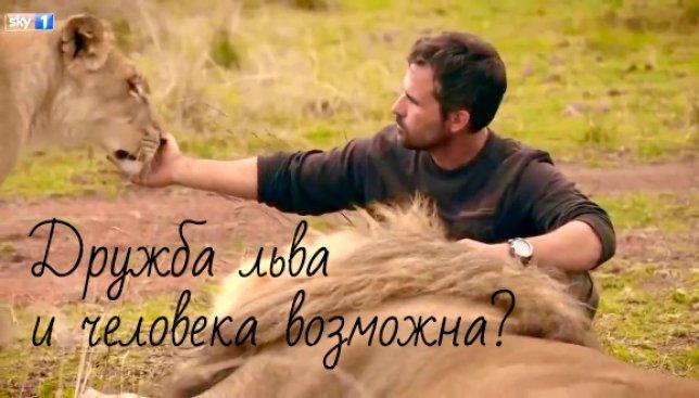 Поразительное видео: как лев может быть настоящим другом человеку