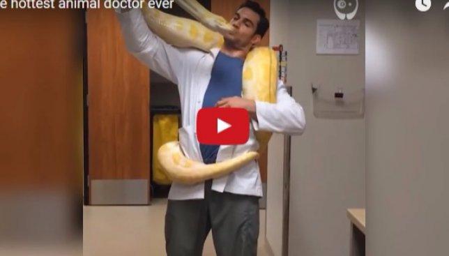 Найден самый сексуальный ветеринар в мире, который к тому же еще и модель (Видео)